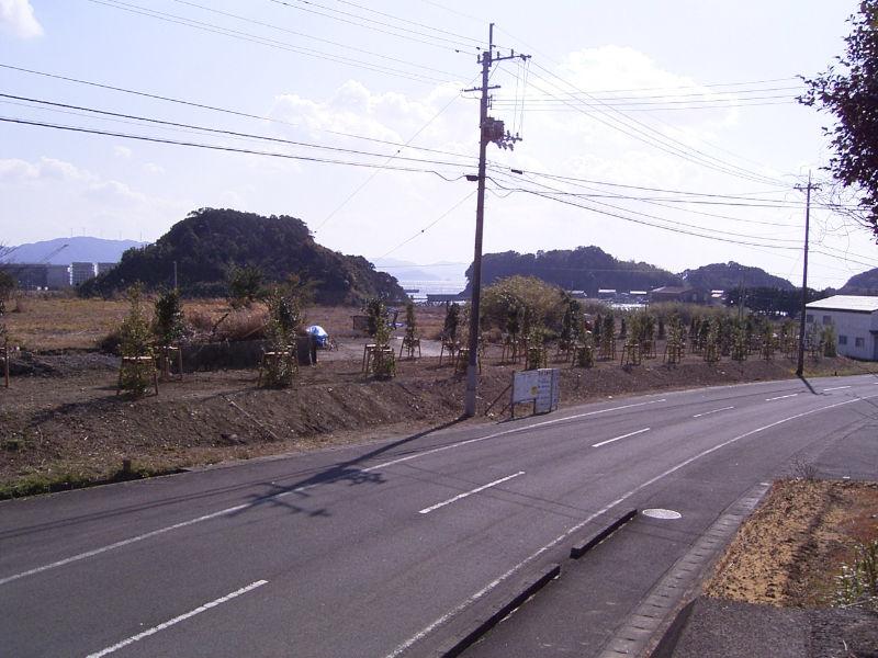 宿毛湾港県単改良(緑地整備)工事